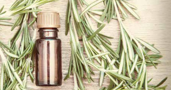 An Introduction to Homeopathy | Skeptical Inquirer
