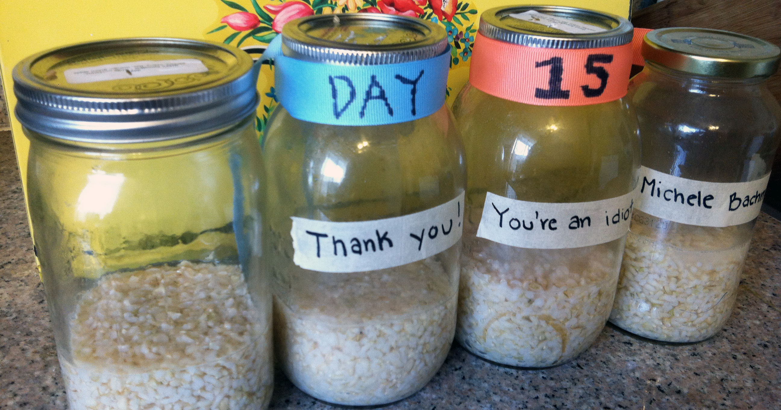 A Grain of Truth: Recreating Dr  Emoto's Rice Experiment